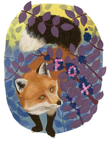 Blueberry Fox, gouache, 2015