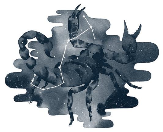 Scorpio, ink, 2016