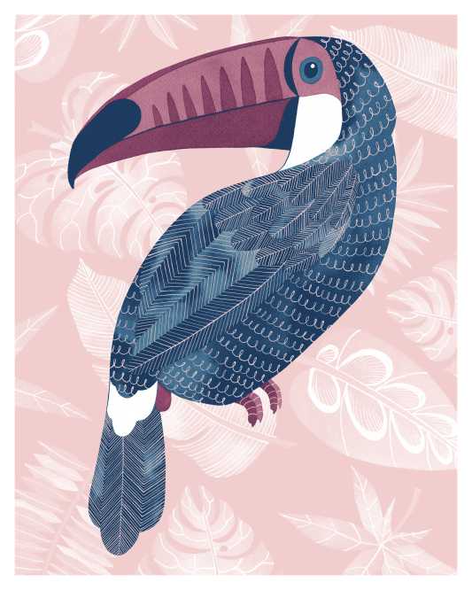 Toucan, ink and digital, 2015